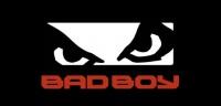 bad boy records marketing plan